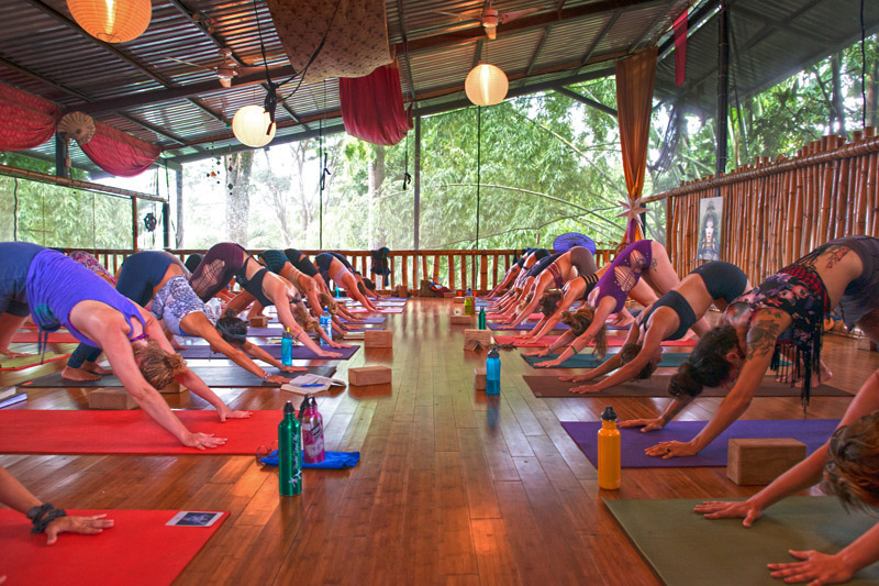 Danyasa Bamboo YogaPlay Studio